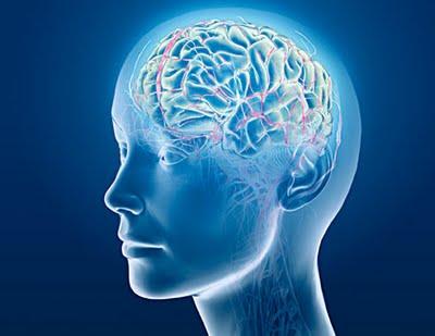 Subluxaciones vertebrales afectan mensajes cerebro/cuerpo