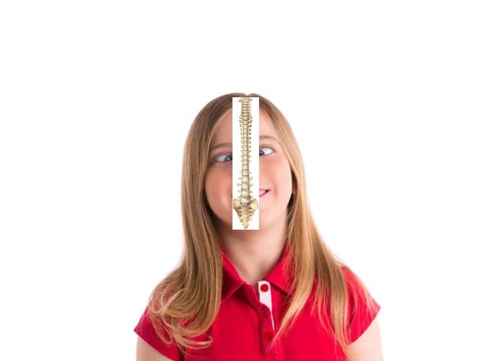 columna vertebral Mataro