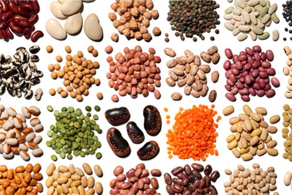 Alimentos ricos en Folato Top 10