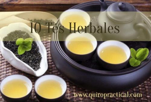 10 Tés Herbales beneficiosos para tu Salud