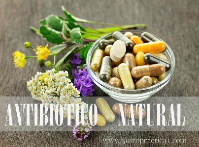 Antibioticos principio activo de plantas