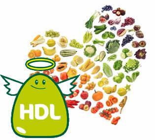 grasa HDL es tu amiga